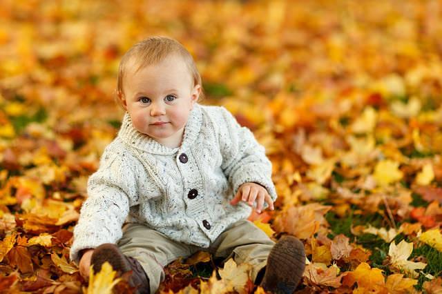 mały chłopiec w parku jesienią