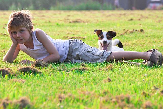 Chłopiec z psem na trawie