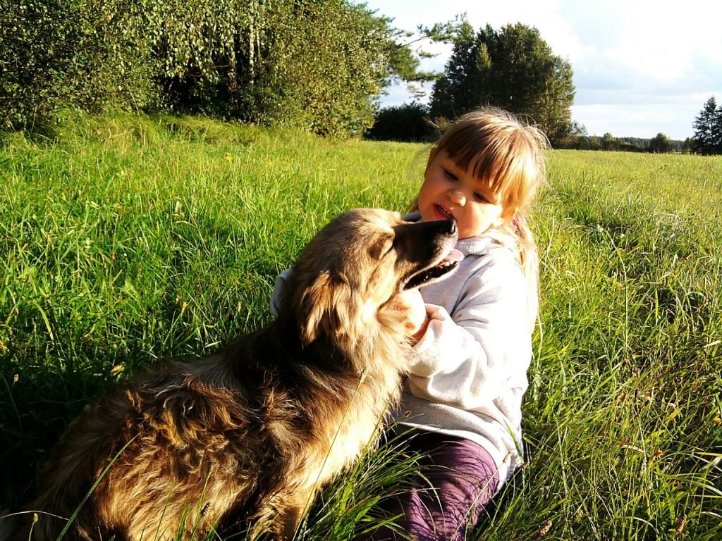 zwierzę dla dziecka pies