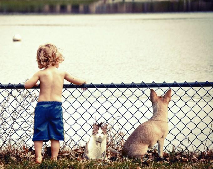 zwierze-dla-dziecka-chlopczyk-i-zwierzeta