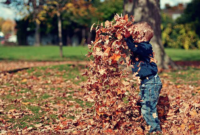 dziecko na spacerze w parku