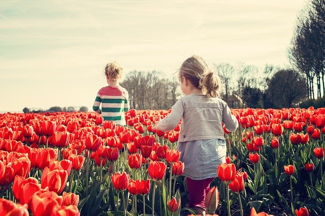 Dzieci wśród tulipanów